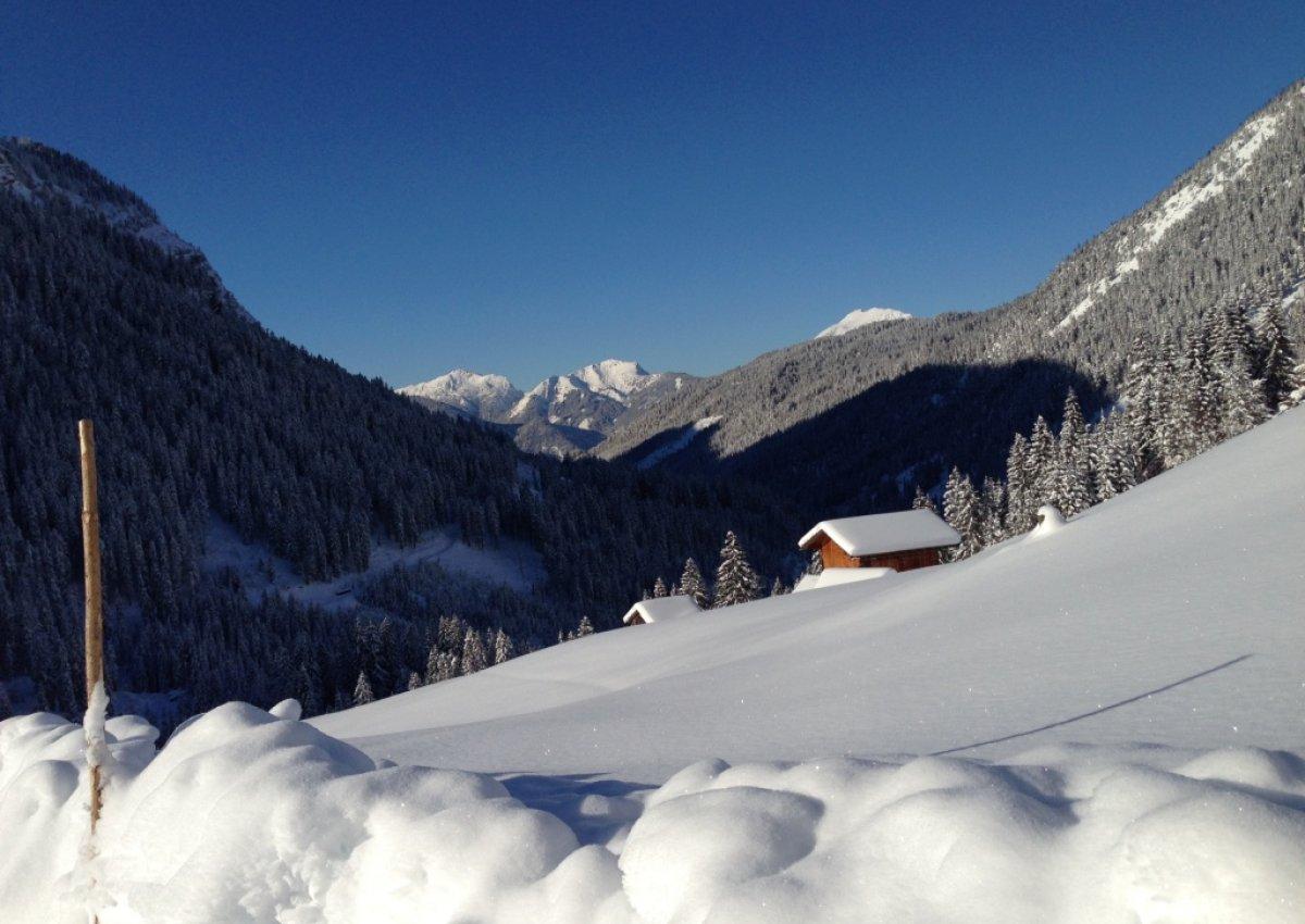Winterglück im Pulverschnee 2021
