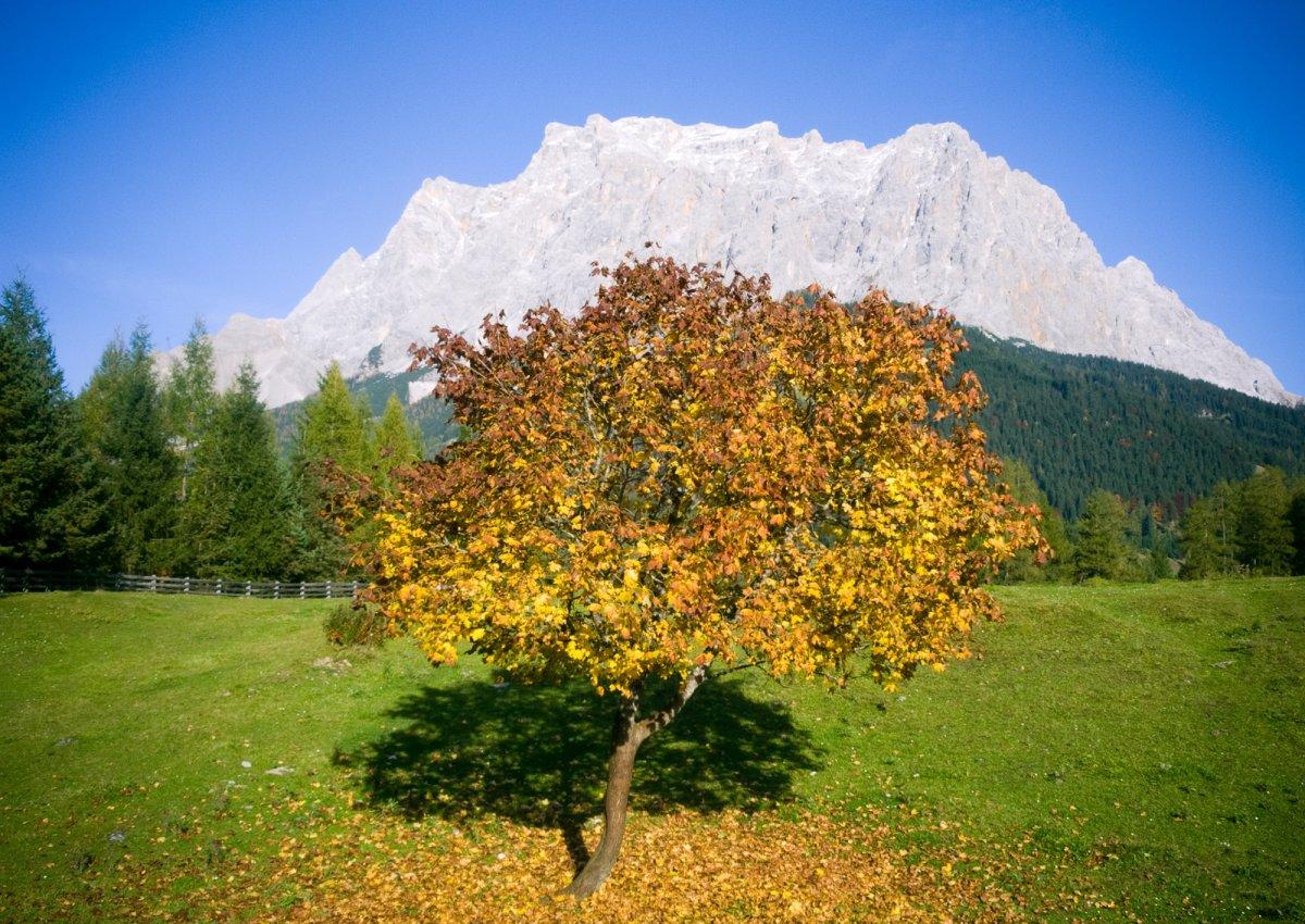 Wanderwoche Bunter Herbst